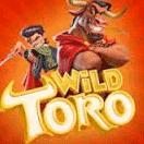 wild toro no deposit
